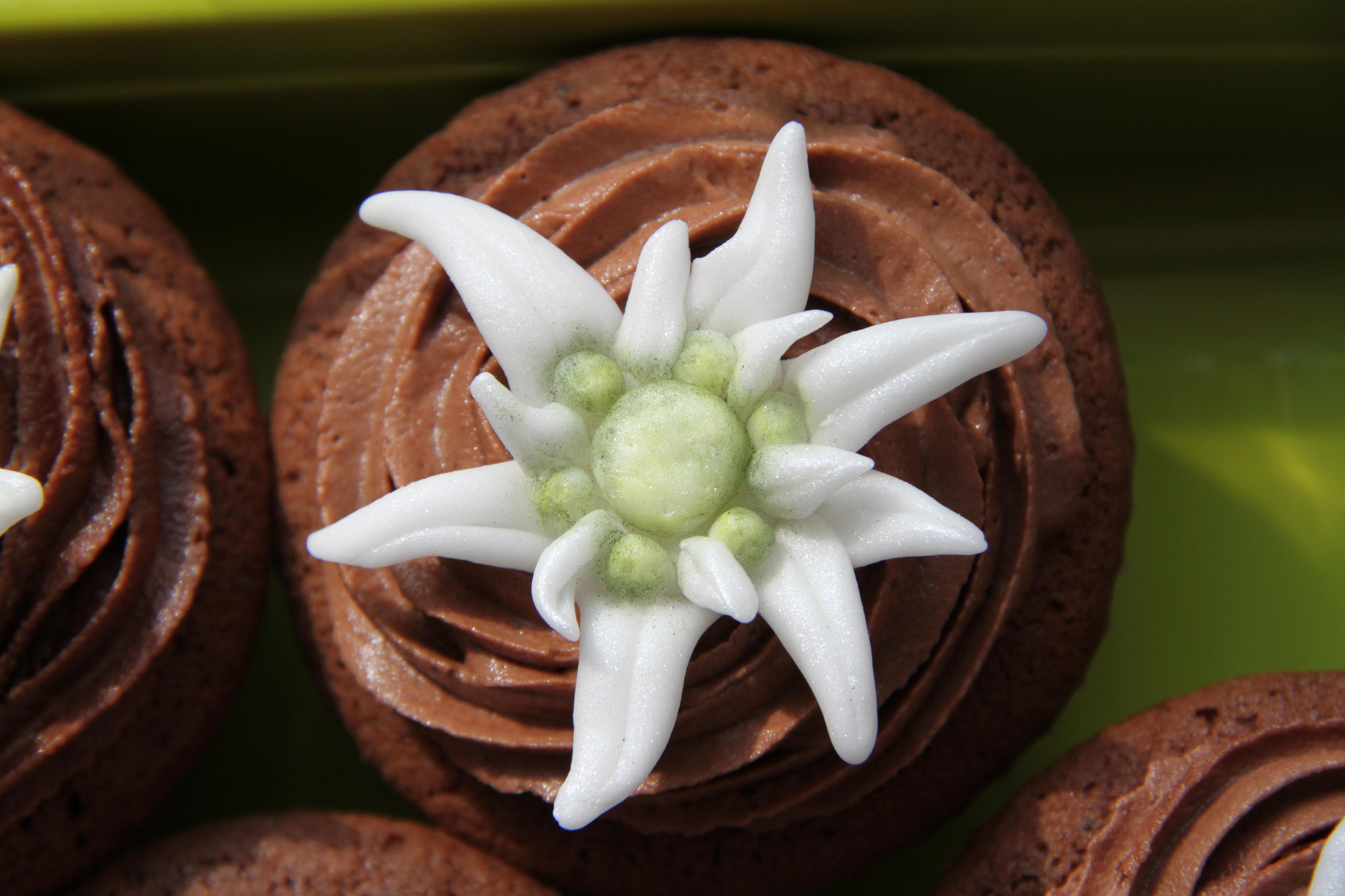fondant edelweiss auf schokolade cupcakes 1 zuckertruckli. Black Bedroom Furniture Sets. Home Design Ideas